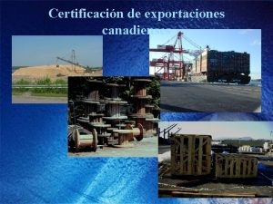 Certificacin de exportaciones canadienses Polticas de exportacin de