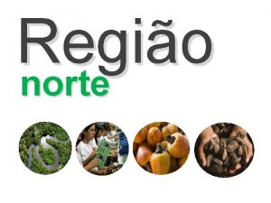 Regio norte A Regio Norte uma das cinco