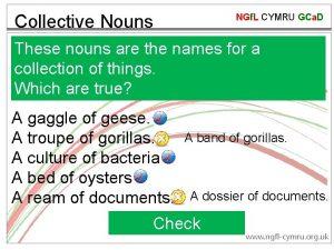 Collective Nouns NGf L CYMRU GCa D These