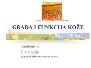 GRAA I FUNKCIJA KOE Anatomija i Fiziologija Bogumila