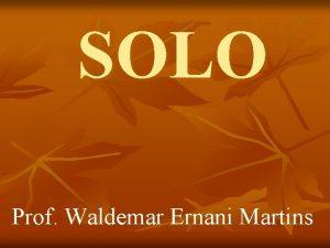 SOLO Prof Waldemar Ernani Martins SOLO Parte mais