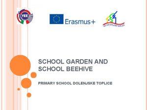 SCHOOL GARDEN AND SCHOOL BEEHIVE PRIMARY SCHOOL DOLENJSKE