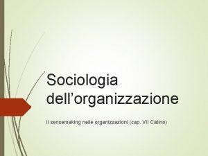 Sociologia dellorganizzazione Il sensemaking nelle organizzazioni cap VII