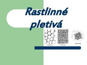 Rastlinn pletiv Schma rastlinnej bunky Pletivo je sbor