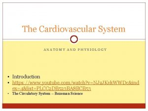 The Cardiovascular System ANATOMY AND PHYSIOLOGY Introduction https