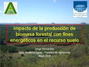 Impacto de la produccin de biomasa forestal con