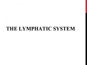 THE LYMPHATIC SYSTEM WHAT EXACTLY IS THE LYMPHATIC