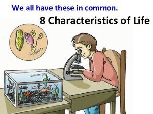 We all have these in common 8 Characteristics