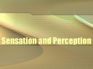 Sensation and Perception Sensation and Perception Sensation stimulation