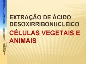 EXTRAO DE CIDO DESOXIRRIBONUCLEICO CLULAS VEGETAIS E ANIMAIS