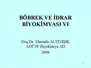 BBREK VE DRAR BYOKMYASI VI Do Dr Mustafa