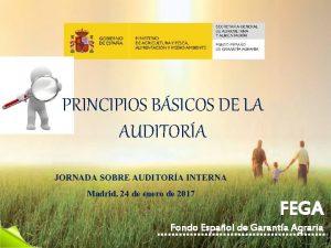 PRINCIPIOS BSICOS DE LA AUDITORA JORNADA SOBRE AUDITORA