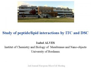 Study of peptidelipid interactions by ITC and DSC
