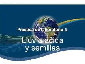 Prctica de laboratorio 4 Lluvia cida y semillas