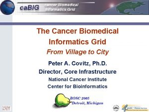 0 The Cancer Biomedical Informatics Grid From Village