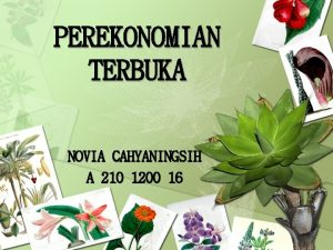 PEREKONOMIAN TERBUKA NOVIA CAHYANINGSIH A 210 1200 16