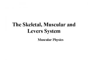 The Skeletal Muscular and Levers System Muscular Physics