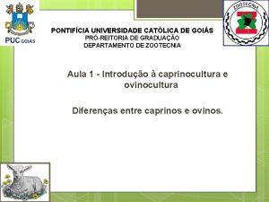PONTIFCIA UNIVERSIDADE CATLICA DE GOIS PRREITORIA DE GRADUAO