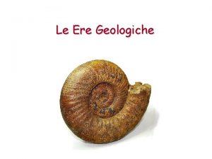 Le Ere Geologiche La Storia della Vita sulla