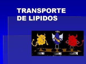 TRANSPORTE DE LIPIDOS DEFINICION Complejos de lpidos y