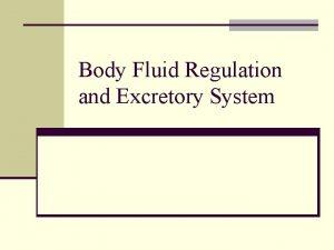 Body Fluid Regulation and Excretory System Body Fluid