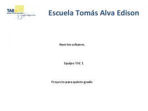 Escuela Toms Alva Edison Huertos urbanos Equipo TAE