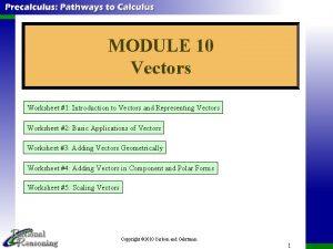 MODULE 10 Vectors Worksheet 1 Introduction to Vectors