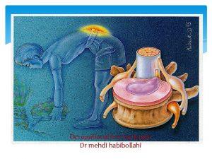 Occupational low back pain Dr mehdi habibollahi LBP