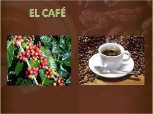 EL CAF Caf es la bebida que se