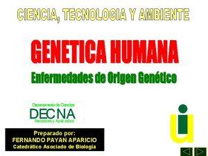 Preparado por FERNANDO PAYAN APARICIO Catedrtico Asociado de