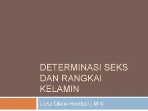 DETERMINASI SEKS DAN RANGKAI KELAMIN Luisa Diana Handoyo