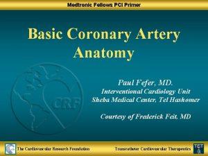 Medtronic Fellows PCI Primer Basic Coronary Artery Anatomy