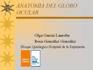 ANATOMIA DEL GLOBO OCULAR Olga Garca Lauroba Rosa