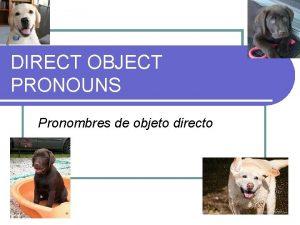 DIRECT OBJECT PRONOUNS Pronombres de objeto directo Direct