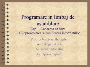 Programare in limbaj de asamblare Cap 1 Concepte