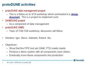 proto DUNE activities proto DUNE data management project