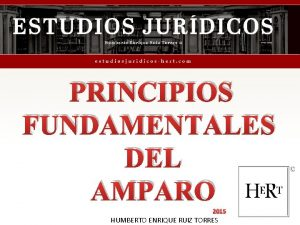 PRINCIPIOS FUNDAMENTALES DEL AMPARO 2015 HUMBERTO ENRIQUE RUIZ