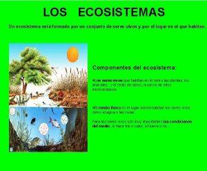LOS ECOSISTEMAS Un ecosistema est formado por un