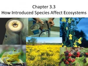 Chapter 3 3 How Introduced Species Affect Ecosystems