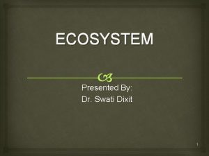 ECOSYSTEM Presented By Dr Swati Dixit 1 Concept