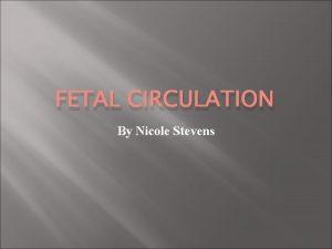 FETAL CIRCULATION By Nicole Stevens FETAL CIRCULATION Human