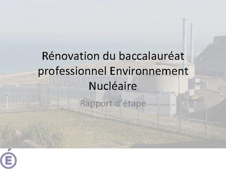 Rnovation du baccalaurat professionnel Environnement Nuclaire Rapport dtape