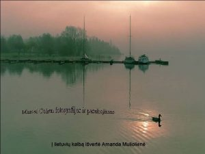 lietuvi kalb ivert Amanda Muliolien Vien dien profesorius