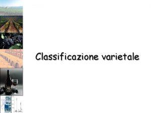 Classificazione varietale Classificazione varietale Oltre che su base