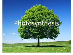 Photosynthesis Energy and Life Living things need energy