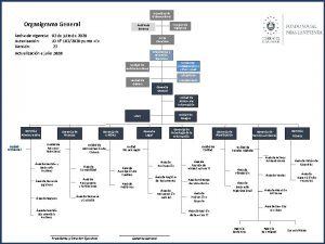 Asamblea de Gobernadores Organigrama General Consejo de Vigilancia