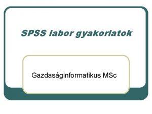 SPSS labor gyakorlatok Gazdasginformatikus MSc 1 feladat Sorszmvltoz