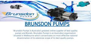 BRUNSDON PUMPS Brunsdon Pumps is Australias greatest online