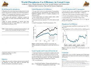 World Phosphorus Use Efficiency in Cereal Crops Guilherme