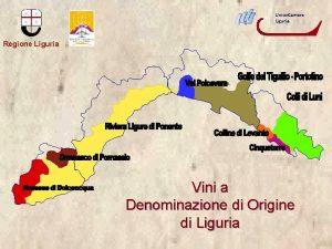 Union Camere Liguria Regione Liguria Vini a Denominazione